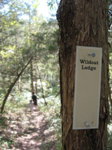 Nature Hike 1