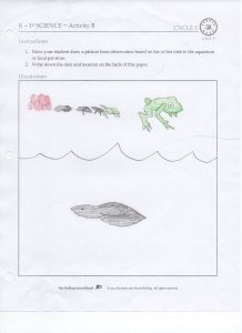 Science Nature Journal